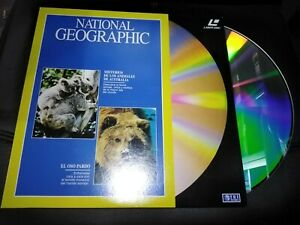 National-Geographic-Laser-Disc-Uncanny-Animals-IN-Australia-Y-The-Grizzly-Bear