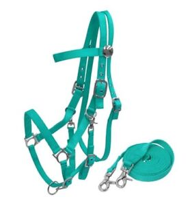TEAL-Durable-Nylon-Combination-Halter-Bridle-w-7-039-Reins-NEW-HORSE-TACK