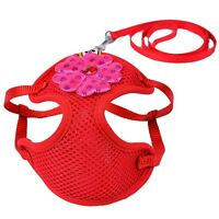 DOG HARNESS LEAD SET XS ADJUSTABLE PUPPY TEACUP TINY CHIHUAHUA red mesh flower