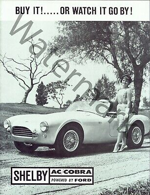 Dodge VIPER vs Shelby AC COBRA Road Test Brochure 1996
