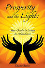 Prosperity and the Light: Your Guide to Living in Abundance by Diane Stein (Paperback, 2011)