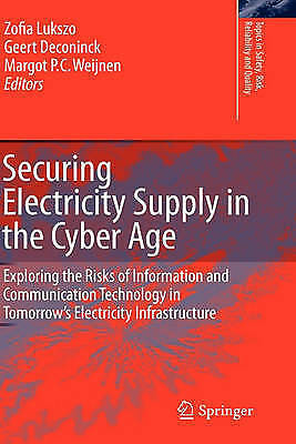 Securing Electricity Supply in the Cyber Age: Exploring the Risks of Information