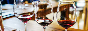 How to Choose the Right Wine Glass for Your Wine