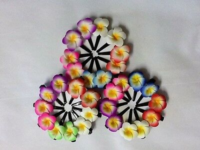 Hair Accessories Women's Accessories Small 2-2.5cm Bracing Up The Whole System And Strengthening It Enthusiastic Pk Of 10 Beautiful Colourful Frangipani Hair Clips