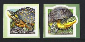 Kanada-2019-Gefaehrdete-Turtles-Selbstklebend-Paar-Nicht-Gefasst-Postfrisch-MNH