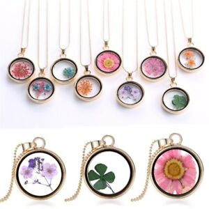 Natural-Dried-Flower-Glass-Locket-Pendant-Necklace-Women-Sweater-Chain-Jewelry