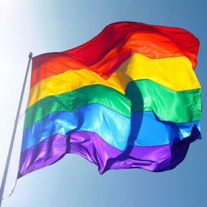 Rainbow LGBT PRIDE FESTIVAL FLAGS Diversity Lesbian Gay Parade 5 ft x 3 ft Flag