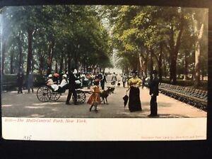 Vintage-Postcard-gt-1901-1907-gt-Central-Park-gt-The-Mall-gt-New-Yorkk-City-gt-N-Y