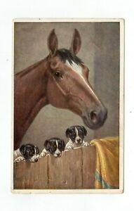 Horse-in-a-Barn-With-Three-Puppies-Postcard