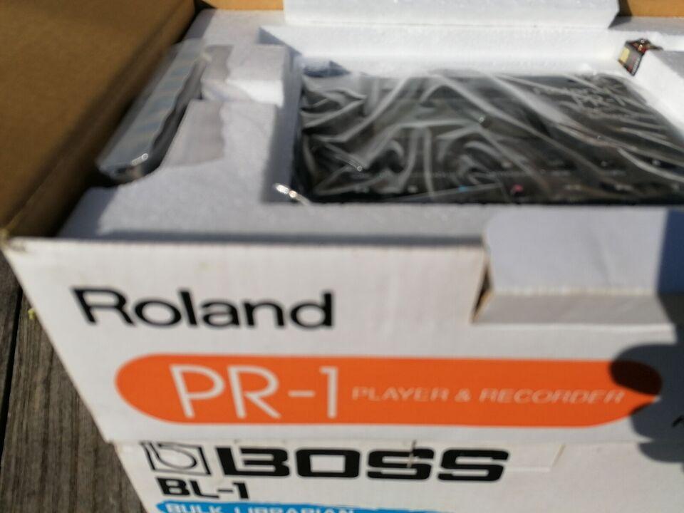 Modul, Roland PR-1