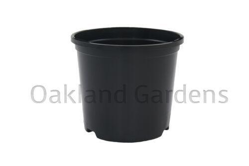 6 x 3 litri per piante vasi di plastica resistente nero vaso di fiori L LT di alta qualità