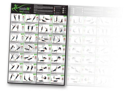Eaglefit ® sling formateur exercice poster avec 28 exercices au format a1 sur a4 feuillures