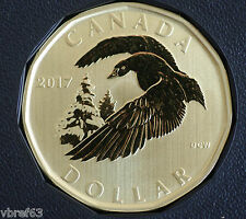 2017 Canada Snow Goose Loon Dollar $1 coin Specimen finish coin only: from set