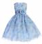 Precious-Blue-Chiffon-Flower-Girl-Party-Pageant-Dress-Crayon-Kids-USA thumbnail 1