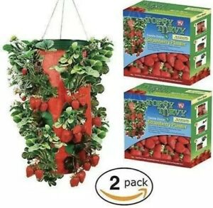 Topsy-Turvy-Strawberry-planter-2-Pack-Vertical-Hanging-Upside-Down