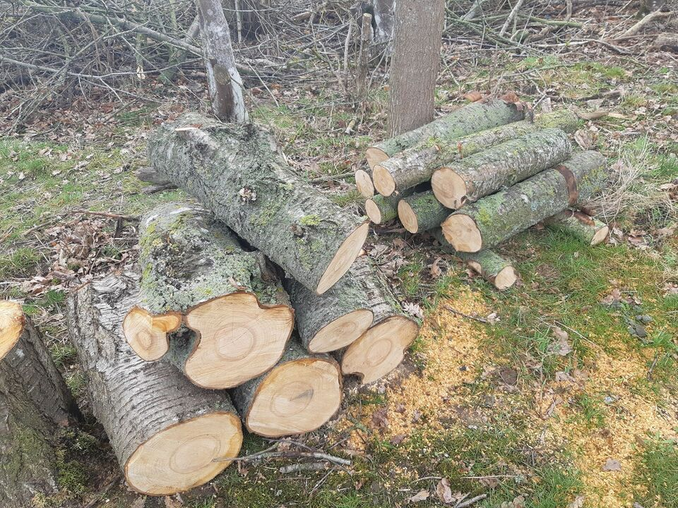 Andet, Træ