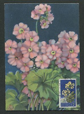 Sonderabschnitt San Marino Mk 1957 Flora SchlÜsselblume Maximumkarte Maximum Card Mc Cm D7069 MöChten Sie Einheimische Chinesische Produkte Kaufen? Natur & Pflanzen Motive