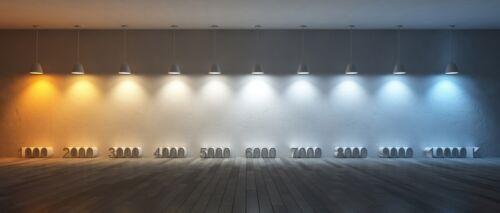 LED Fluorescent Tube with Socket Neon Tube Complete 120 cm 2700K 2er Pack EEK A
