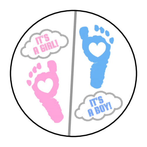 30 Gender Reveal Party Stickers Lollipop Labels Party Favors 1.5 in YOU PICK