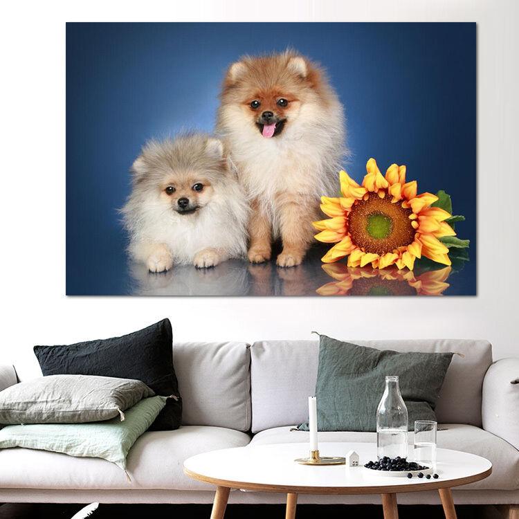 3D Hund sonnenblumen 53 Fototapeten Wandbild BildTapete AJSTORE DE Lemon