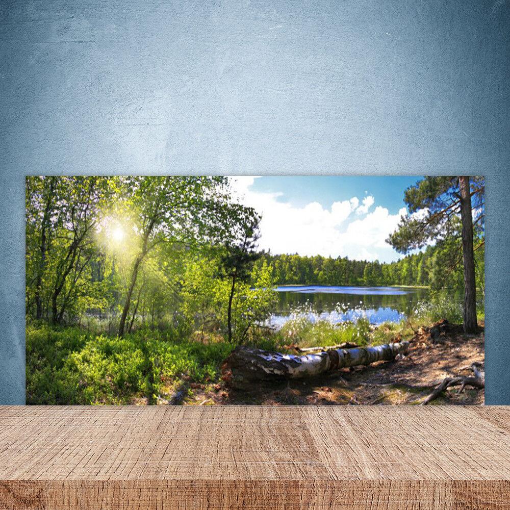Crédence de cuisine en verre Panneau Paroi 100x50 Nature Lac Forestier
