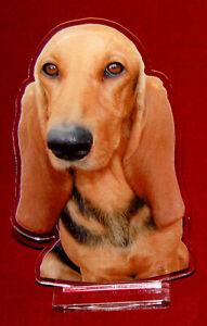 statuette-photosculptee-10x15-cm-chien-bruno-du-jura-1-dog-hund-perro-cane