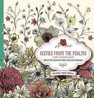 Scenes from the Psalms - Adult Coloring Book: Color the Comfort of God's Care and Protection by Faith Passio (Paperback / softback, 2017)