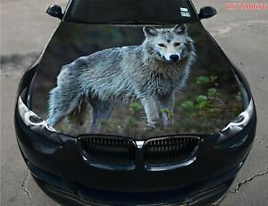 Wet Wolf Car Truck SUV Hood Full Color Graphics Wrap Decal ...