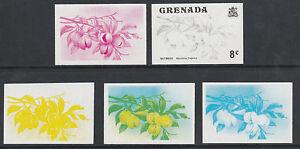 Objectif Grenade 2592 - 1975 Noix Muscade 8c Set De 5 Progressive Des Preuves Non Montés-afficher Le Titre D'origine éLéGant Dans Le Style