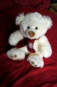 White Teddy Bear  20 cm - Northampton, United Kingdom - White Teddy Bear  20 cm - Northampton, United Kingdom