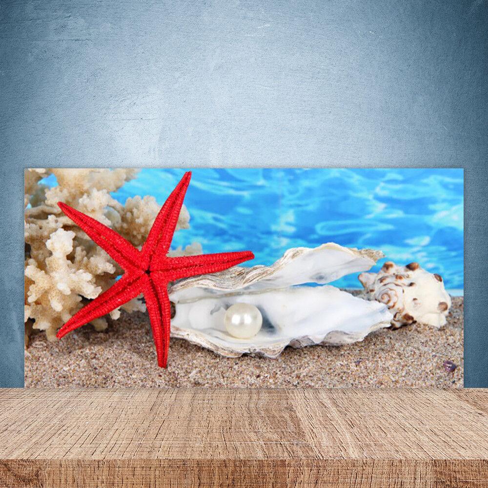 Crédence de cuisine en verre Panneau Paroi 100x50 Nature étoile De Mer Coquilles