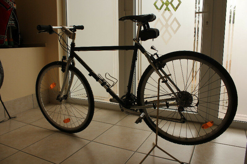 Bicycle EPPLE for Men (Germany)