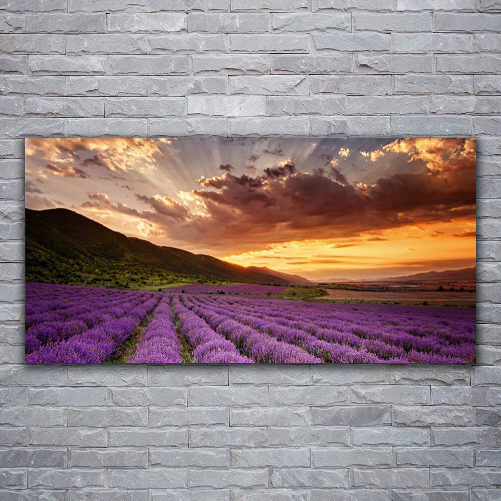 Canvas print Wall art on 120x60 120x60 120x60 Image Picture Mountains Meadow Flowers Landscape 7ea94c