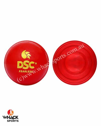 DSC Cricket Wobble Ball