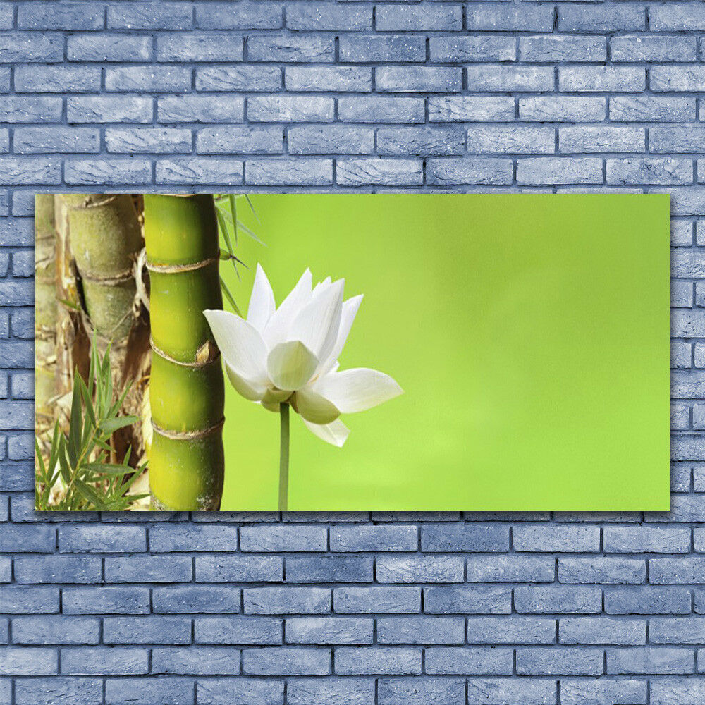 Print on Glass Wall art 140x70 Picture Picture Picture Image Bamboo Stalk Flower Floral f75119