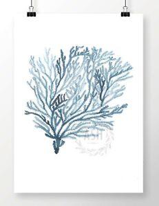 SEA-FAN-I-Watercolour-Coastal-Art-Print-Hamptons-Nautical-Beach-Coral-Painting