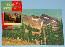 "VTG JIGSAW PUZZLE PERFECT PICTURE ""MOUNTAIN GRANDEUR"" SNOW CAP PINES CAMPERS CIB"