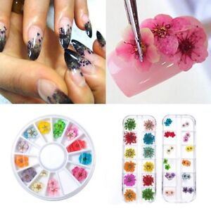3D-Real-Dried-Dry-Flowers-Nail-Art-Decoration-Design-DIY-Tips-Manicure-12-Colors