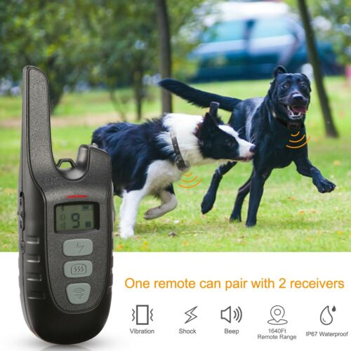 US Dog Shock Collar Remote Waterproof Electric for Pet Training Rechargeable New
