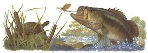 1-Wide-Mouth-Bass-Fish-Wrap-Wraparound-8-1-2-034-X-3-034-Waterslide-Ceramic-Decal-Xx