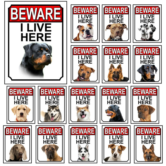 Dog Breed Gate Signs Beware I Live Here Metal Tin Signs Garden Yard Fence