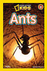 Ants by Melissa Stewart (Paperback, 2010)