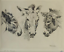 William-Robinson-Leigh-Etching-DONKEYS-United-States-1866-1955-15-034-H-17-039-W thumbnail 3