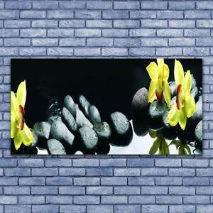 Acrylglasbilder Wandbilder aus Plexiglas® 125x50 Blumen Pflanzen