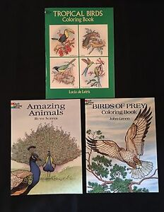 Image Is Loading 3 Dover Coloring Books Tropical Birds Of