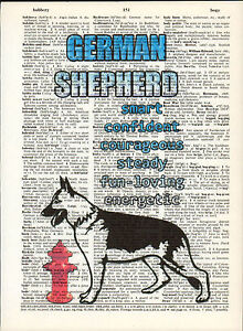German Shepherd Dog Traits Altered Art Print Upcycled Vintage Dictionary Page