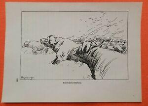 Humoristique Buffle Troupeau Buffle Syncerus Dont Sacrément Wilhelm Kuhnert Afrique Gravure Sur Bois 1920-afficher Le Titre D'origine Limpide à Vue