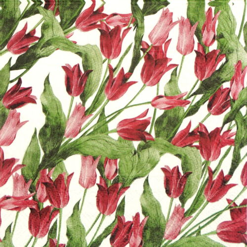Red Tulip White 4x Paper Napkins for Decoupage Decopatch Craft