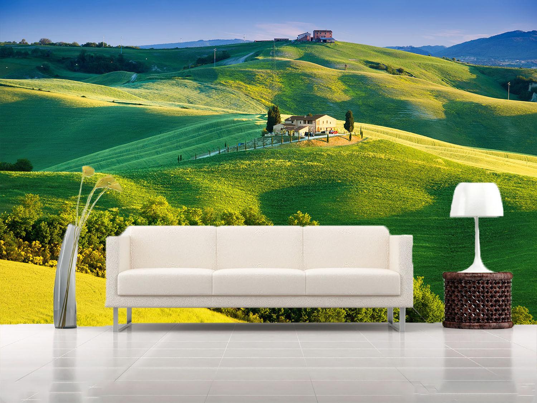3D greene Hügel Farm Haus 74 Tapete Wandgemälde Tapete Tapeten Bild Familie DE