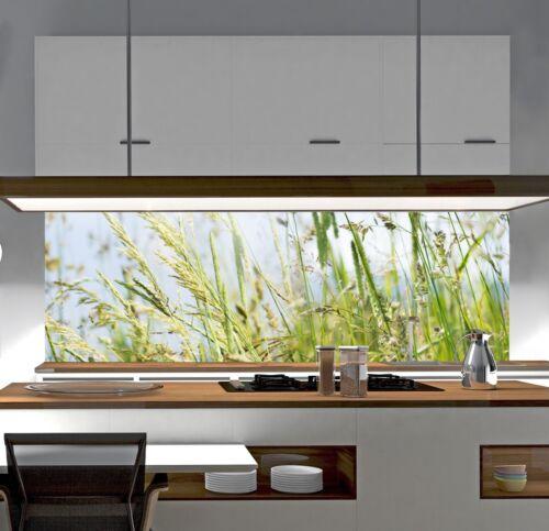 Cocina plano posterior en todas partes donde usted una protección contra salpicaduras necesitan cristal acrílico sp37